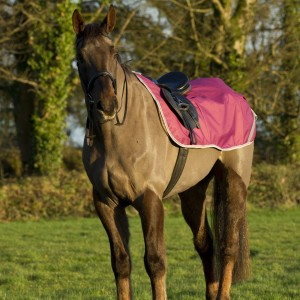 Freedom Riding Rug Berry