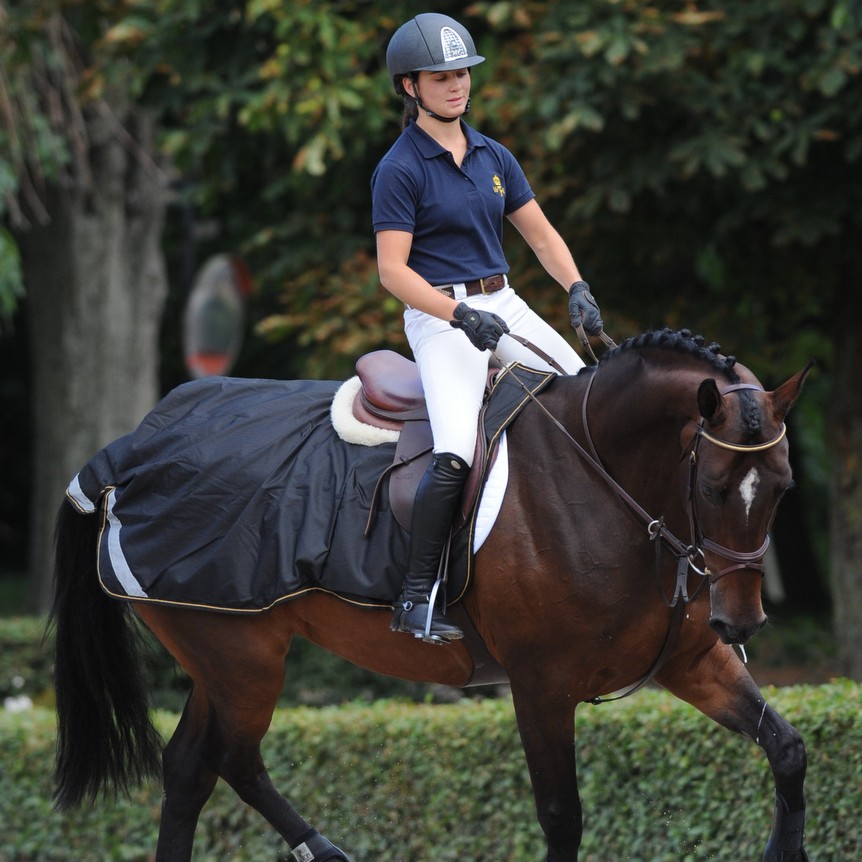 Bucas Riding Rug Black Gold - Bucas