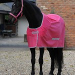 Competition  Cooler Cherry Pink
