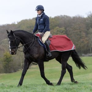 Clearance - Riding & Speciality Rugs