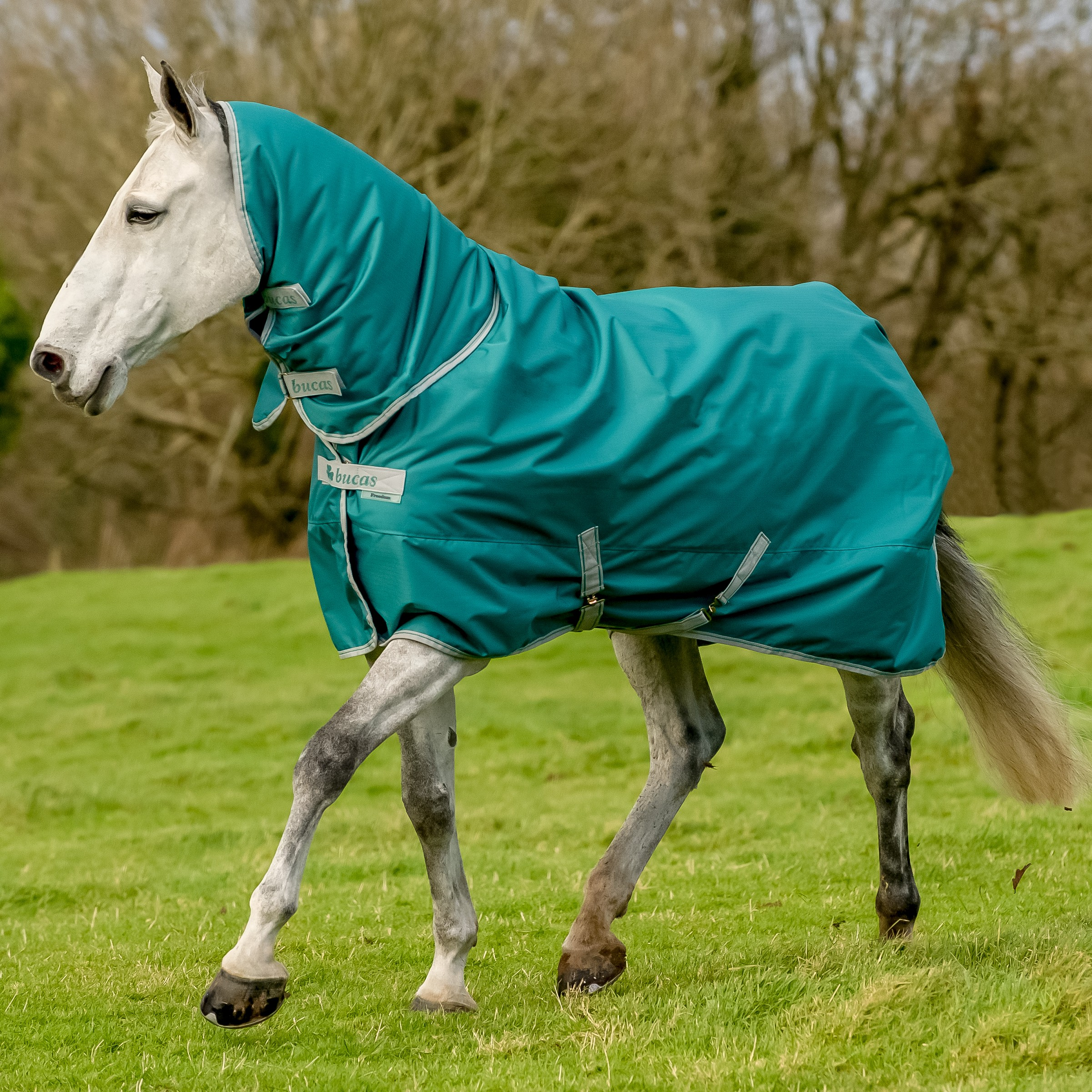 Turnout Rug Clearance Home Decor