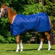 Irish Stable Pony