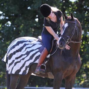 Riding Rug Zebra