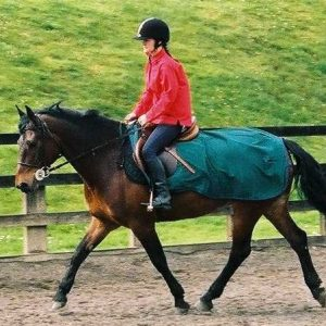 Shamrock Power Riding Rug